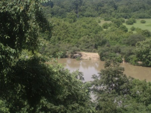 Watching bathing elephants from the viewpoint veranda.