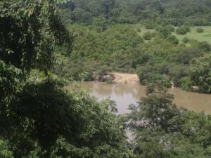 Watching bathing elephants from the viewpoint veranda.